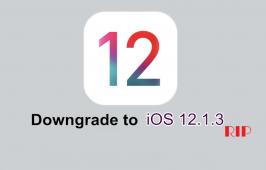 Apple បិទលែងអោយទម្លាក់មកកាន់ iOS 12.1.3 បានទៀតទេ ខណៈដែល Version ថ្មីត្រៀមដាក់ចេញ ឆាប់ៗខាងមុខនេះ