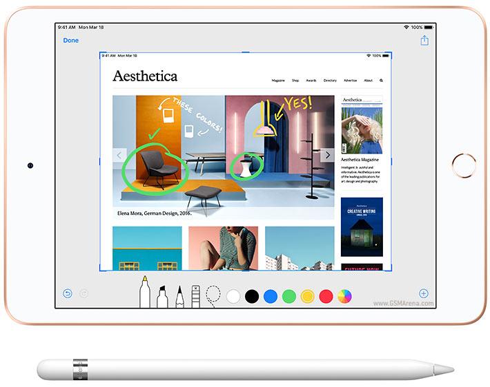 iPad MiNi5 64GB (2019)